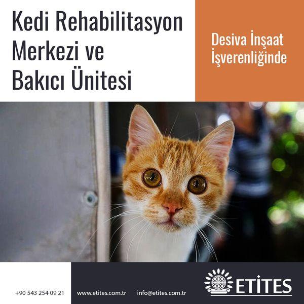 Kedi Rehabilitasyon Merkezi ve Bakıcı Ünitesi
